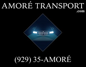 Amore Transport logo
